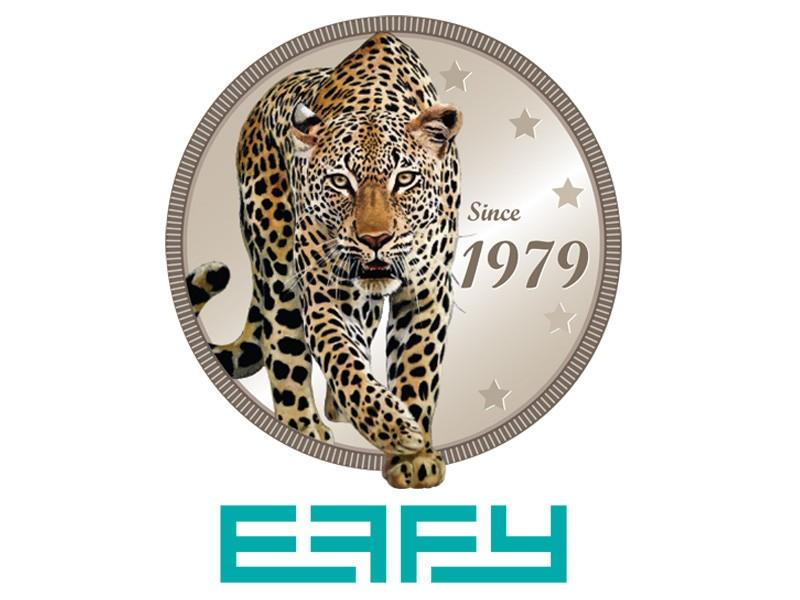 https://www.hellodiamonds.com/upload/product/ycpm88sdd5.jpg